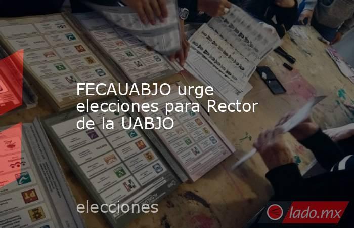 FECAUABJO urge elecciones para Rector de la UABJO. Noticias en tiempo real