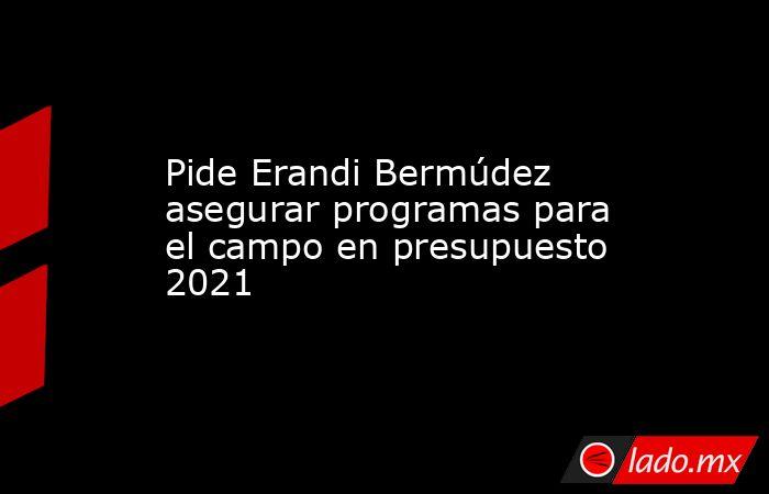 Pide Erandi Bermúdez asegurar programas para el campo en presupuesto 2021. Noticias en tiempo real
