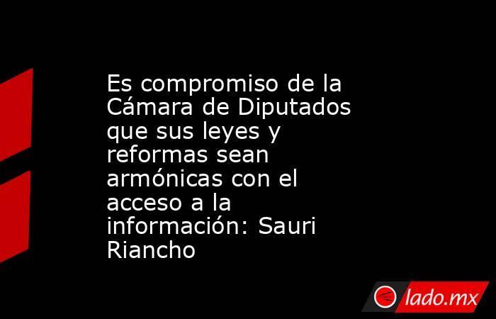 Es compromiso de la Cámara de Diputados que sus leyes y reformas sean armónicas con el acceso a la información: Sauri Riancho. Noticias en tiempo real