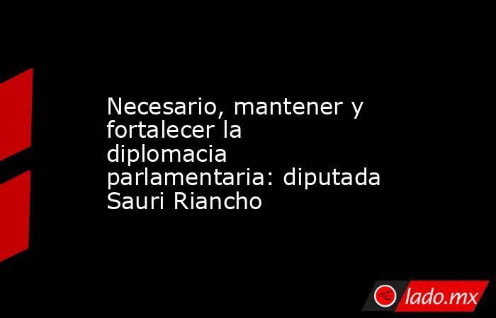 Necesario, mantener y fortalecer la diplomacia parlamentaria: diputada Sauri Riancho. Noticias en tiempo real