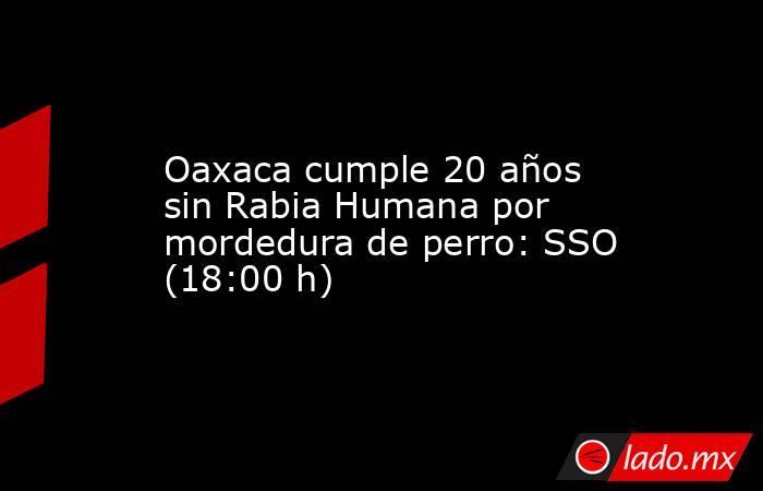 Oaxaca cumple 20 años sin Rabia Humana por mordedura de perro: SSO (18:00 h). Noticias en tiempo real