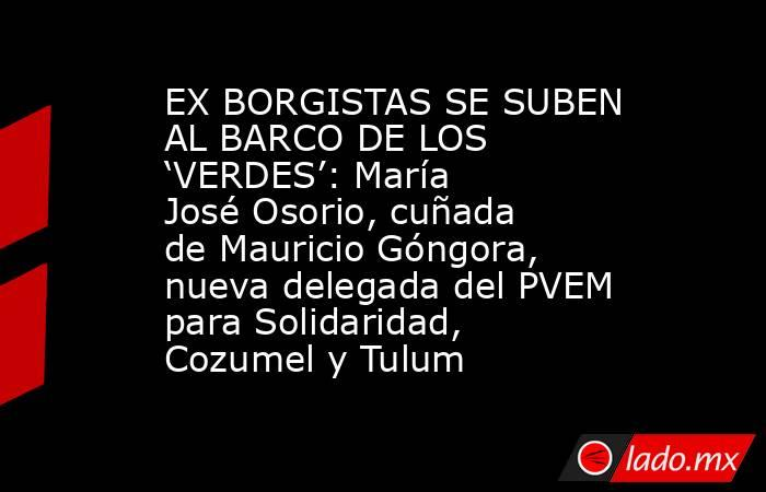 EX BORGISTAS SE SUBEN AL BARCO DE LOS 'VERDES': María José Osorio, cuñada de Mauricio Góngora, nueva delegada del PVEM para Solidaridad, Cozumel y Tulum. Noticias en tiempo real