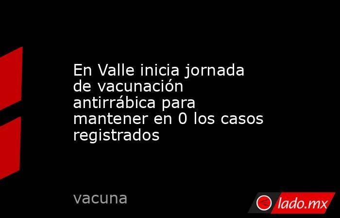 En Valle inicia jornada de vacunación antirrábica para mantener en 0 los casos registrados. Noticias en tiempo real