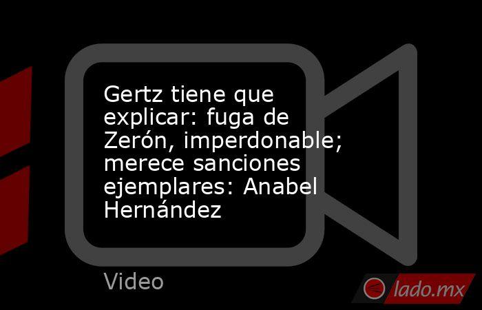 Gertz tiene que explicar: fuga de Zerón, imperdonable; merece sanciones ejemplares: Anabel Hernández. Noticias en tiempo real