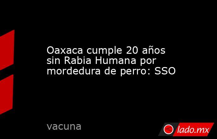 Oaxaca cumple 20 años sin Rabia Humana por mordedura de perro: SSO. Noticias en tiempo real