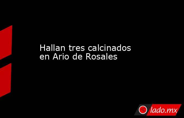 Hallan tres calcinados en Ario de Rosales. Noticias en tiempo real