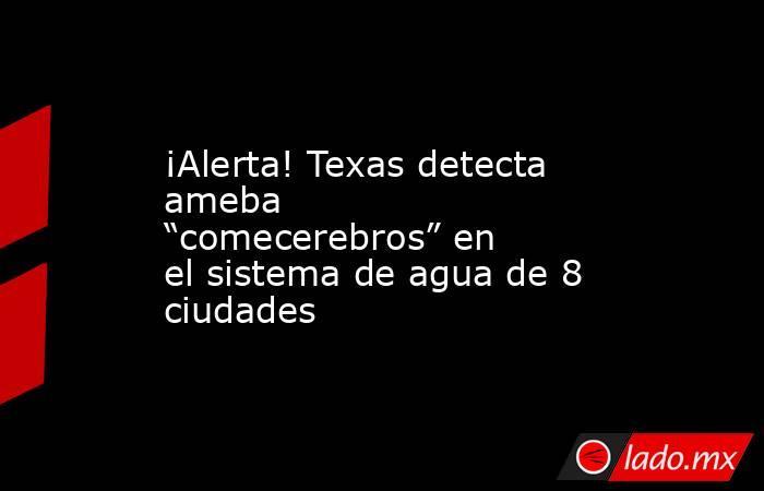 """¡Alerta! Texas detecta ameba """"comecerebros"""" en el sistema de agua de 8 ciudades. Noticias en tiempo real"""