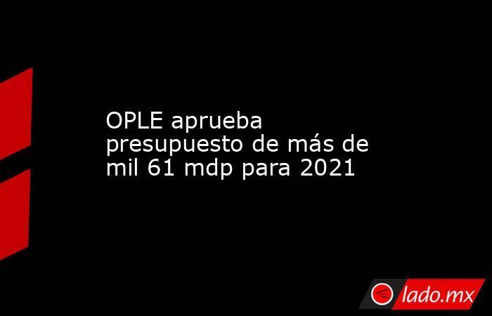 OPLE aprueba presupuesto de más de mil 61 mdp para 2021. Noticias en tiempo real