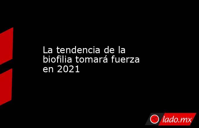 La tendencia de la biofilia tomará fuerza en 2021. Noticias en tiempo real