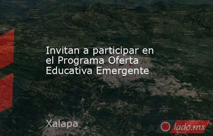 Invitan a participar en el Programa Oferta Educativa Emergente. Noticias en tiempo real