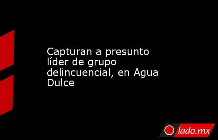 Capturan a presunto líder de grupo delincuencial, en Agua Dulce. Noticias en tiempo real