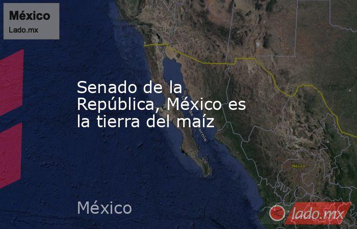 Senado de la República, México es la tierra del maíz. Noticias en tiempo real