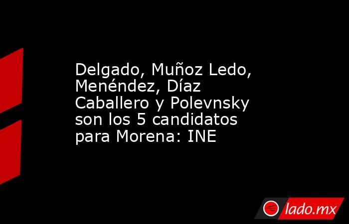 Delgado, Muñoz Ledo, Menéndez, Díaz Caballero y Polevnsky son los 5 candidatos para Morena: INE. Noticias en tiempo real