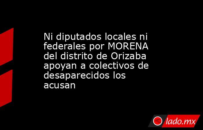 Ni diputados locales ni federales por MORENA del distrito de Orizaba apoyan a colectivos de desaparecidos los acusan. Noticias en tiempo real