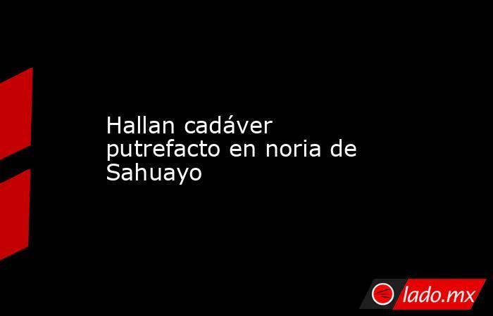 Hallan cadáver putrefacto en noria de Sahuayo. Noticias en tiempo real