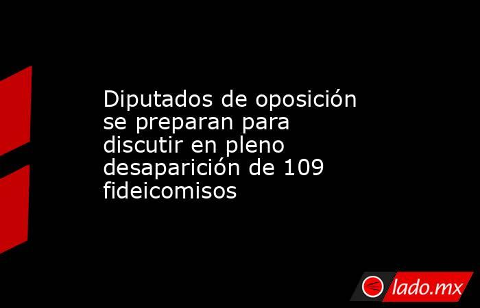 Diputados de oposición se preparan para discutir en pleno desaparición de 109 fideicomisos. Noticias en tiempo real