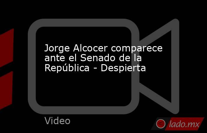 Jorge Alcocer comparece ante el Senado de la República - Despierta. Noticias en tiempo real