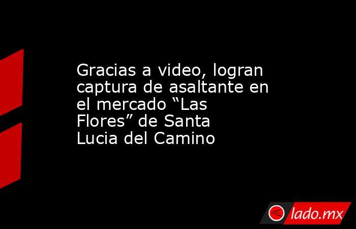 """Gracias a video, logran captura de asaltante en el mercado """"Las Flores"""" de Santa Lucia del Camino. Noticias en tiempo real"""