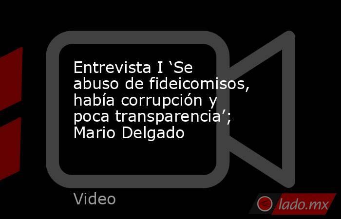 Entrevista I 'Se abuso de fideicomisos, había corrupción y poca transparencia'; Mario Delgado. Noticias en tiempo real