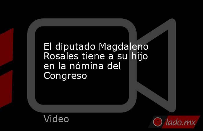 El diputado Magdaleno Rosales tiene a su hijo en la nómina del Congreso. Noticias en tiempo real