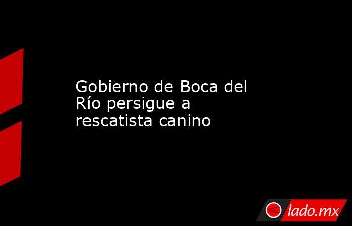 Gobierno de Boca del Río persigue a rescatista canino. Noticias en tiempo real