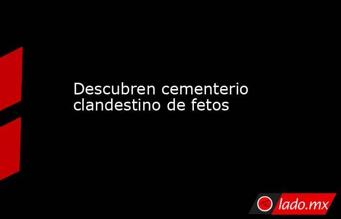 Descubren cementerio clandestino de fetos. Noticias en tiempo real