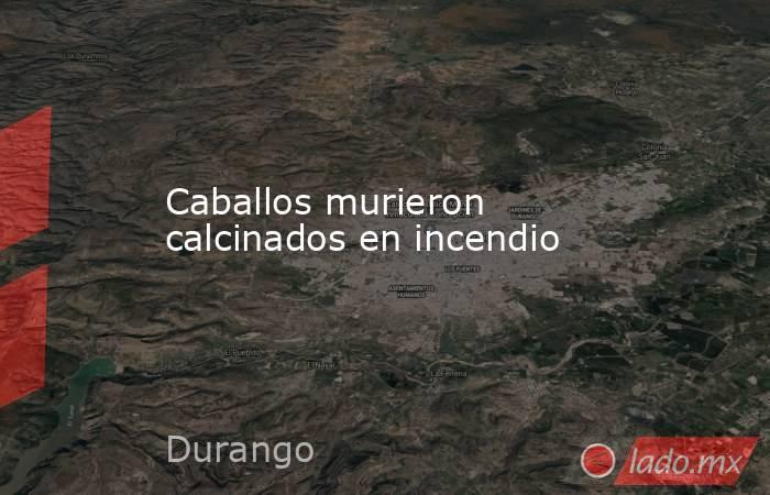 Caballos murieron calcinados en incendio. Noticias en tiempo real