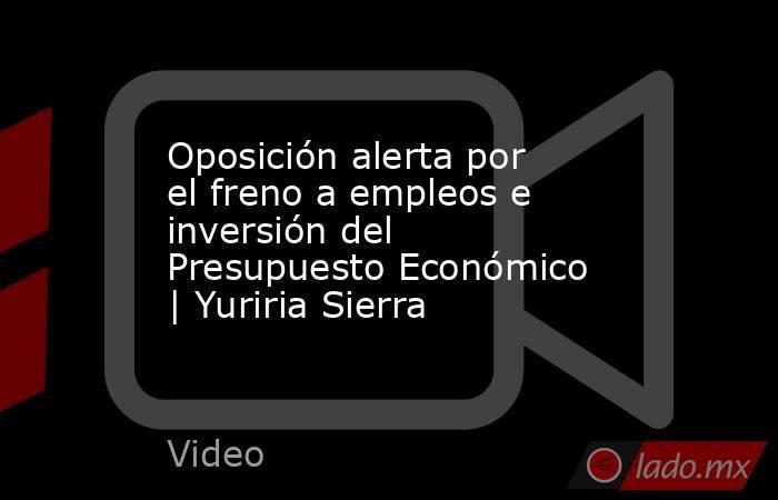 Oposición alerta por el freno a empleos e inversión del Presupuesto Económico | Yuriria Sierra. Noticias en tiempo real