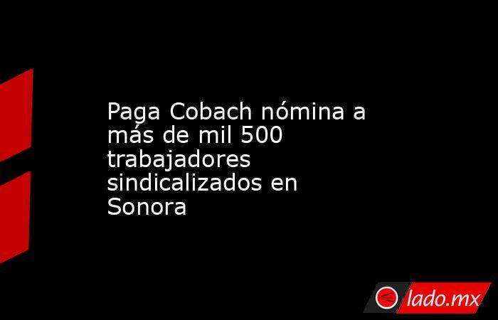 Paga Cobach nómina a más de mil 500 trabajadores sindicalizados en Sonora. Noticias en tiempo real