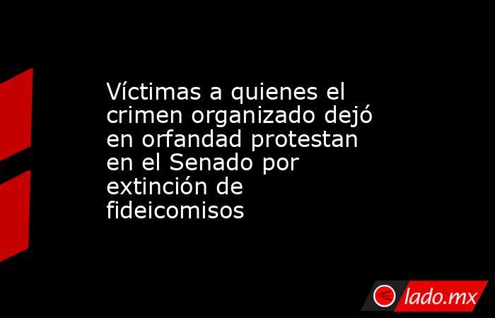 Víctimas a quienes el crimen organizado dejó en orfandad protestan en el Senado por extinción de fideicomisos. Noticias en tiempo real