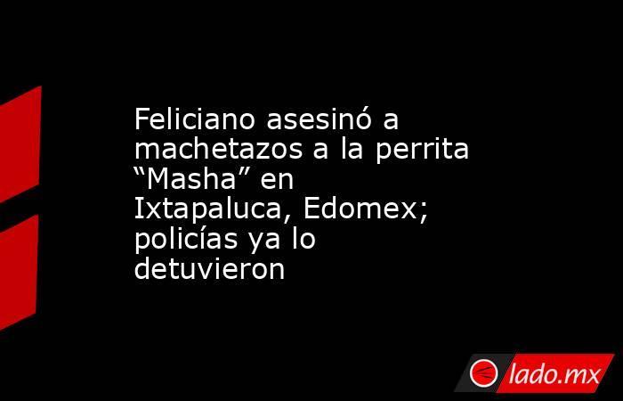"""Feliciano asesinó a machetazos a la perrita """"Masha"""" en Ixtapaluca, Edomex; policías ya lo detuvieron. Noticias en tiempo real"""