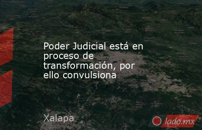 Poder Judicial está en proceso de transformación, por ello convulsiona. Noticias en tiempo real