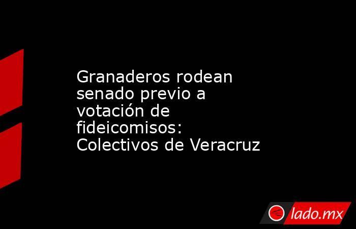 Granaderos rodean senado previo a votación de fideicomisos: Colectivos de Veracruz. Noticias en tiempo real