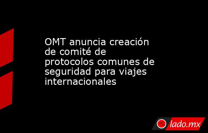 OMT anuncia creación de comité de protocolos comunes de seguridad para viajes internacionales. Noticias en tiempo real