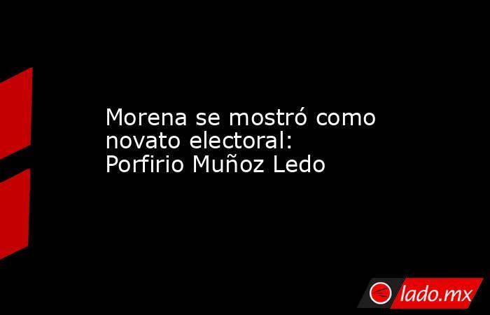 Morena se mostró como novato electoral: Porfirio Muñoz Ledo. Noticias en tiempo real