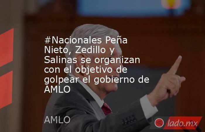 #Nacionales Peña Nieto, Zedillo y Salinas se organizan con el objetivo de golpear el gobierno de AMLO. Noticias en tiempo real