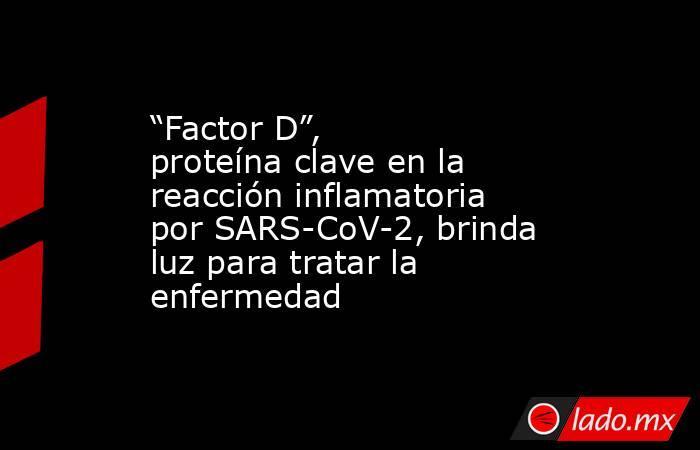 """""""Factor D"""", proteína clave en la reacción inflamatoria por SARS-CoV-2, brinda luz para tratar la enfermedad. Noticias en tiempo real"""