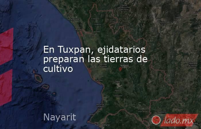 En Tuxpan, ejidatarios preparan las tierras de cultivo. Noticias en tiempo real