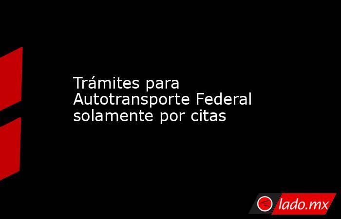 Trámites para Autotransporte Federal solamente por citas. Noticias en tiempo real