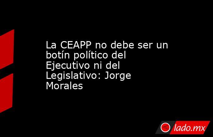 La CEAPP no debe ser un botín político del Ejecutivo ni del Legislativo: Jorge Morales. Noticias en tiempo real