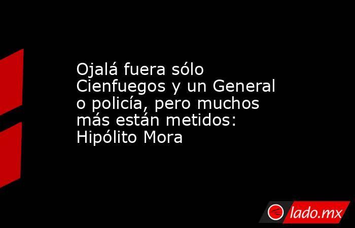 Ojalá fuera sólo Cienfuegos y un General o policía, pero muchos más están metidos: Hipólito Mora. Noticias en tiempo real