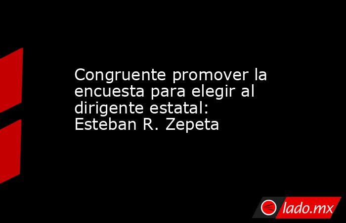Congruente promover la encuesta para elegir al dirigente estatal: Esteban R. Zepeta. Noticias en tiempo real