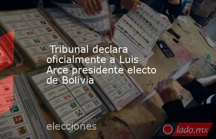 Tribunal declara oficialmente a Luis Arce presidente electo de Bolivia. Noticias en tiempo real