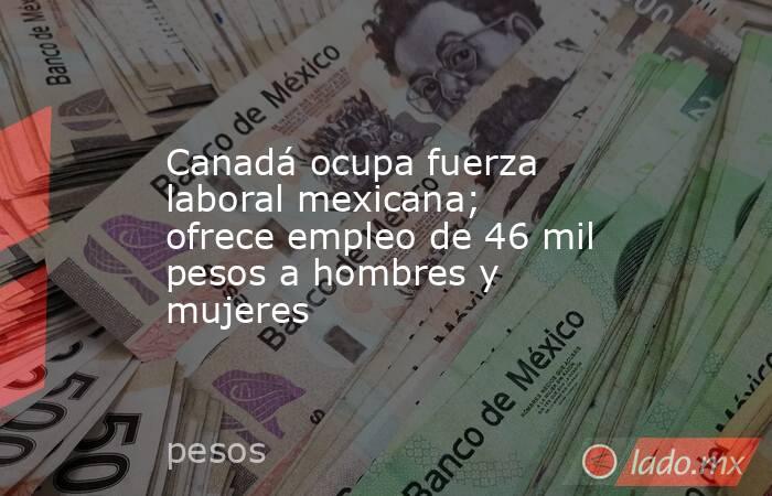 Canadá ocupa fuerza laboral mexicana; ofrece empleo de 46 mil pesos a hombres y mujeres. Noticias en tiempo real