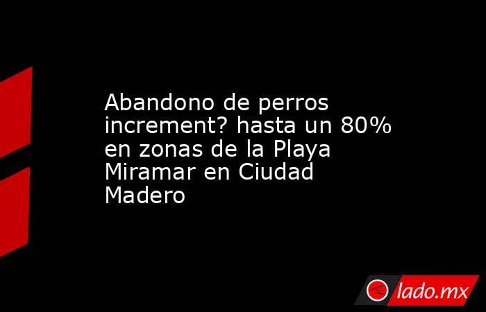 Abandono de perros increment? hasta un 80% en zonas de la Playa Miramar en Ciudad Madero. Noticias en tiempo real