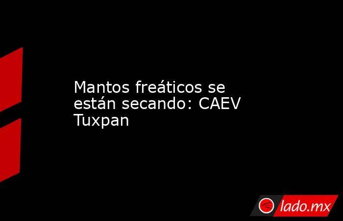 Mantos freáticos se están secando: CAEV Tuxpan. Noticias en tiempo real
