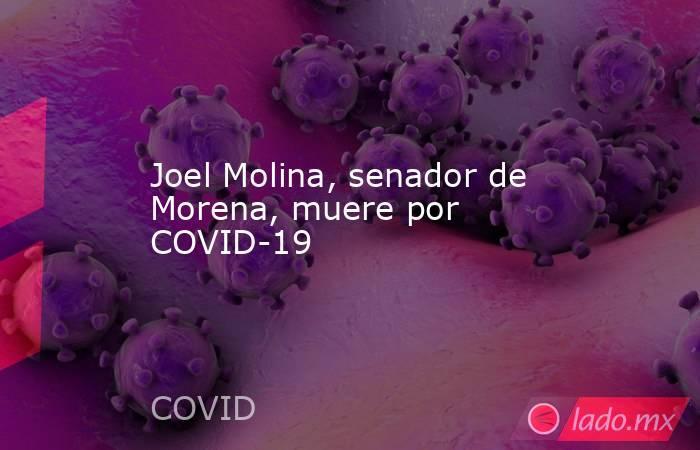 Joel Molina, senador de Morena, muere por COVID-19. Noticias en tiempo real