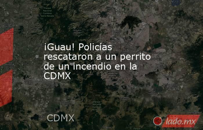 ¡Guau! Policías rescataron a un perrito de un incendio en la CDMX. Noticias en tiempo real