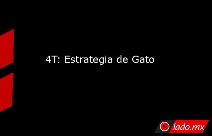 4T: Estrategia de Gato. Noticias en tiempo real