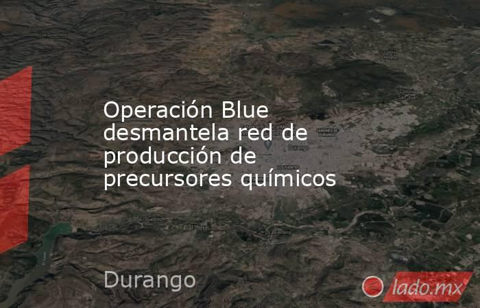 Operación Blue desmantela red de producción de precursores químicos. Noticias en tiempo real